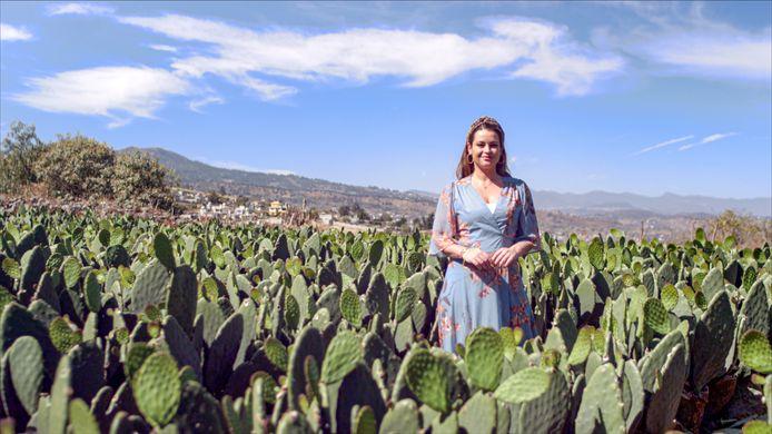 Miljuschka Witzenhausen tussen de cactussen in Mexico