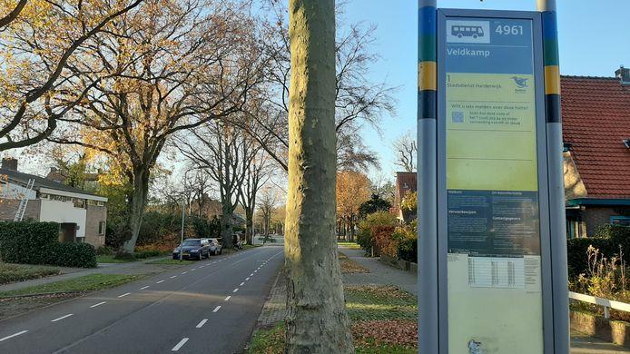 Ook hier in de Mecklenburglaan/Veldkamp rijdt en stopt de stadsbus na 13 december niet meer.