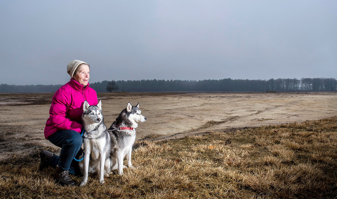 Sibil Heesakkers is een van de vijf mensen die protesteren tegen verdroging van de Groote en Kleine Meer. Op de foto met haar Siberische Huskey's Akina & Keiko aan de rand van het verdroogde Kleine Meer .
