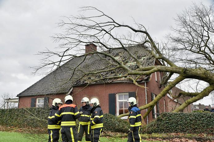 Een boom is op een woning in Riel gevallen.