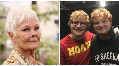 Kleinzoon Judi Dench lijkt als twee druppels water op Ed Sheeran