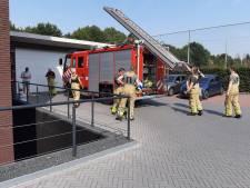 Brandweer redt egeltje uit afvoer in Groenlo