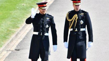 Prins Charles onthult nooit eerder vertoonde portretten van William en Harry