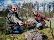 Hoe kweek je truffels in eigen tuin?