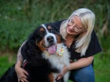 Is deze hond uit Emmeloord de leukste hond van Nederland? 'Iedereen is gek op hem'