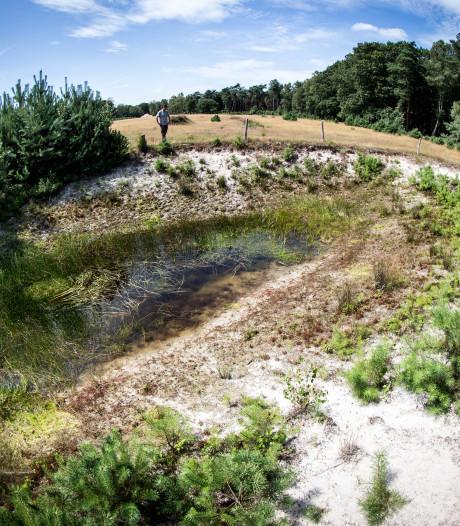 Waterstand in Salland weer op peil, alleen de Heuvelrug blijft nog te droog