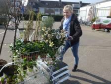 Kogel is door de kerk: Culemborgs tuincentrum verhuist naar Pavijen