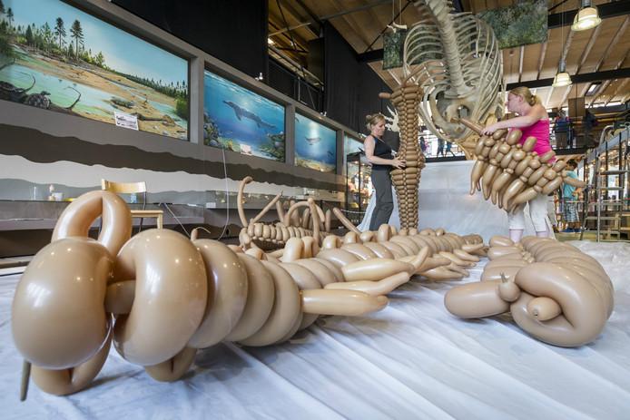 Met ongeveer 1.000 ballonnen werd een T-Rex op ware grootte nagemaakt.