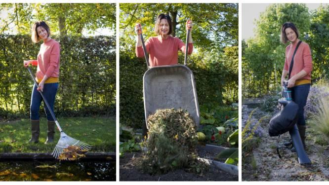 """Tuinexperte toont je de beste manier om herfstbladeren te recycleren: """"Gebruik ze als plantendekentje of maak er bladaarde van"""""""