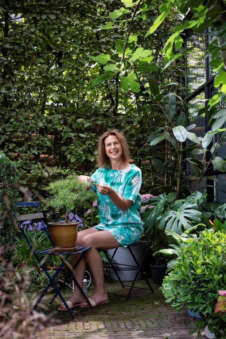 Je hoeft niet per se planten bij te kopen, haal je kamerplanten naar buiten!