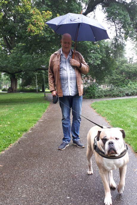 Is Bella bijna vergiftigd? Hond moest braken na eten verdacht gehaktballetje in Almelo's park