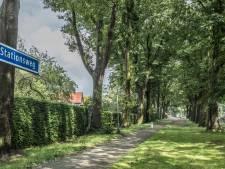 Acht monumentale laan-eiken weg in Gennep vanwege ziekte maar vooral om de overlast
