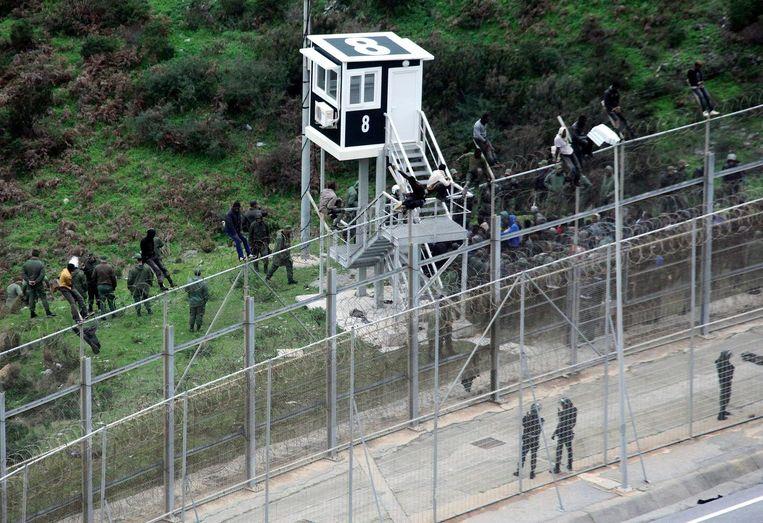 Migranten beklimmen het zes meter hoge hek, terwijl de Marokkaanse politie toekijkt. Beeld epa