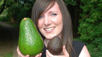 De nederige avocado heeft ook een grote broer: de 'avozilla'