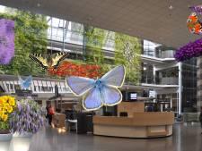 Een vlindertuin en andere groene ideeën voor het Bredase stadskantoor