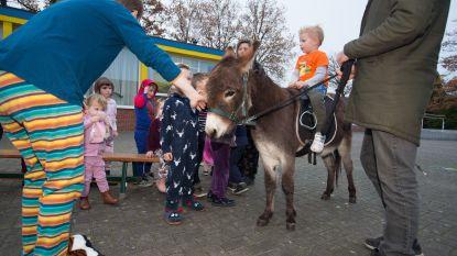 Fleur (2) en Juul (4) elke dag met ezel naar school
