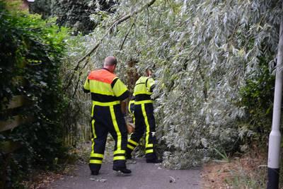Stormschade in West-Brabant: boom dreigt op huis te vallen in Breda, top van boom breekt af in Oosterhout