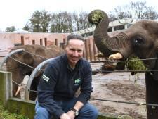 Twee jaar na dood van olifantje Binti hoopt Ouwehands op nieuw babyolifantje