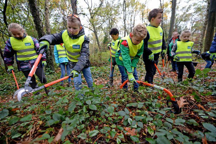 De jeugd in actie bij de Natuurwerkdag van Scouting het Twentse Ros.