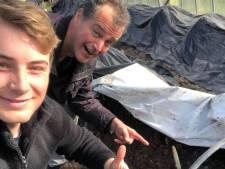 De asperges kunnen worden geoogst voor burgemeester Arends