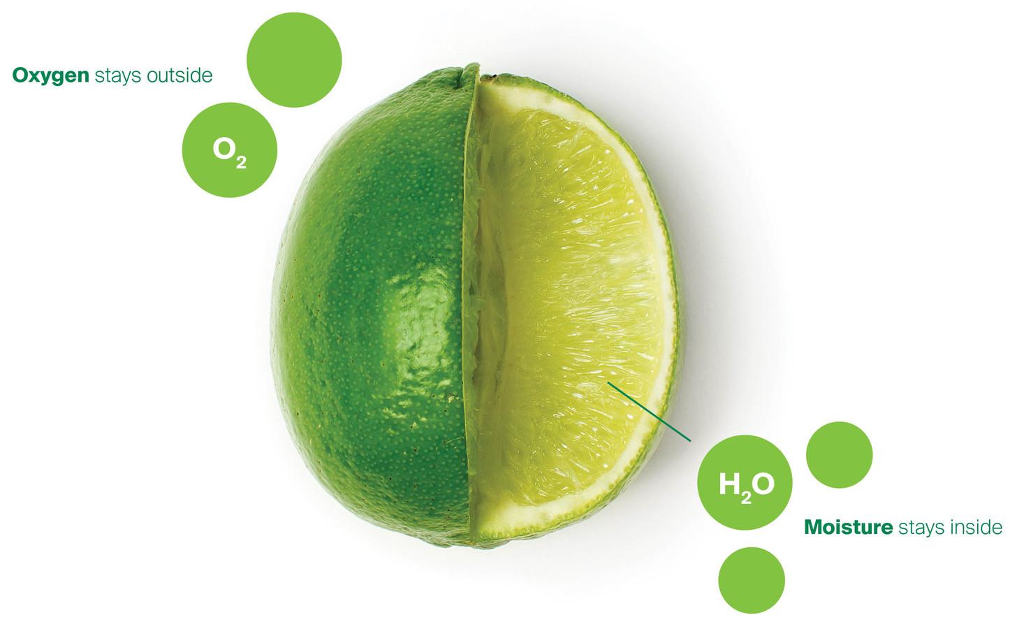 Apeel Sciences stelt dat zuurstof buiten het product blijft, terwijl het vocht juist behouden blijft.
