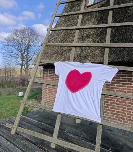 Bezoekerscentrum Ommen wil 'hart voor de zorg' op vijf molens tonen