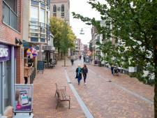 Niet paaltjes, maar camera's moeten auto uit Edese binnenstad gaan weren