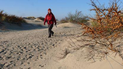 Vlaanderen en Noord-Frankrijk willen duinen in grensgebied samen beschermen