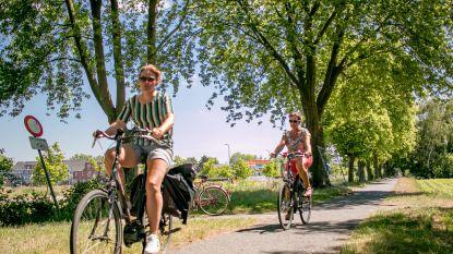 64,5 op 100: het fietsrapport voor Sint-Niklaas