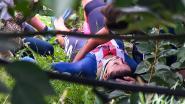 Drama op WK tijdrijden voor vrouwen: Dygert mist goud na zware val, Van der Breggen grijpt wereldtitel