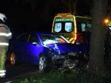 Auto botst op boom in Beerzerveld: twee gewonden en grote ravage