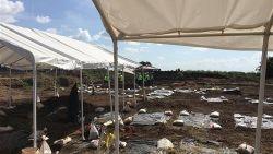 95 skeletten gevonden op bouwgrond van school in Texas