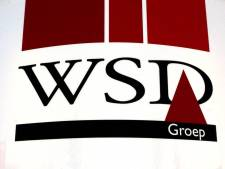 WSD haalt mooie klus binnen bij Designstar