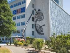 Wereldberoemde graffitikunstenaar ROA aan het werk in eigen stad: kunstig skelet siert gevel van universiteitsmuseum