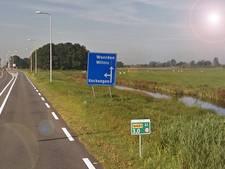 Provincie meet het verkeer met energie uit bermplanten