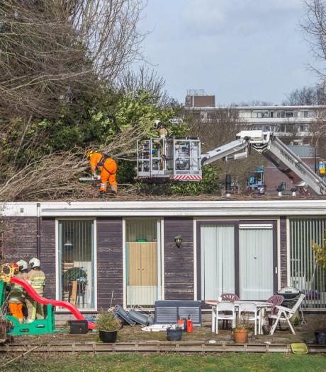 Boom waait op bungalow in Mijdrecht