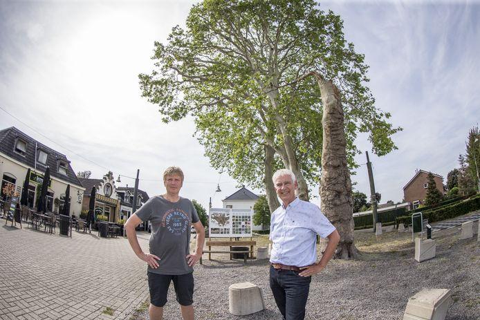 Willem Teger en Geert Jan bittink(blouse) voor half omgewaaid plataan op het Plein onder de Platanen.