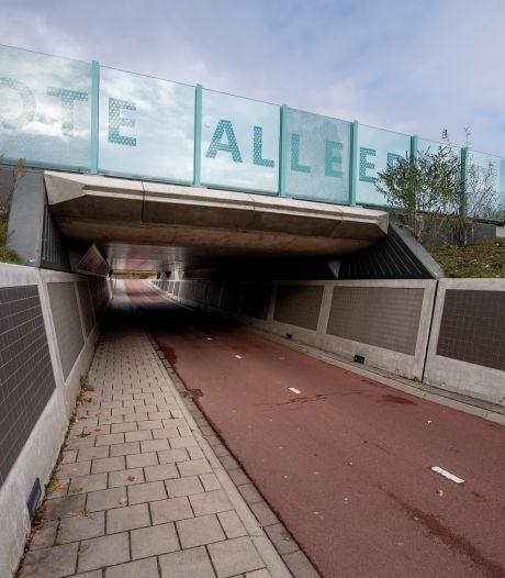 Mishandeling is 'de druppel' voor omwonenden van Nijverdals tunneltje: 'Er wordt gedeald, uitgescholden en vernield'