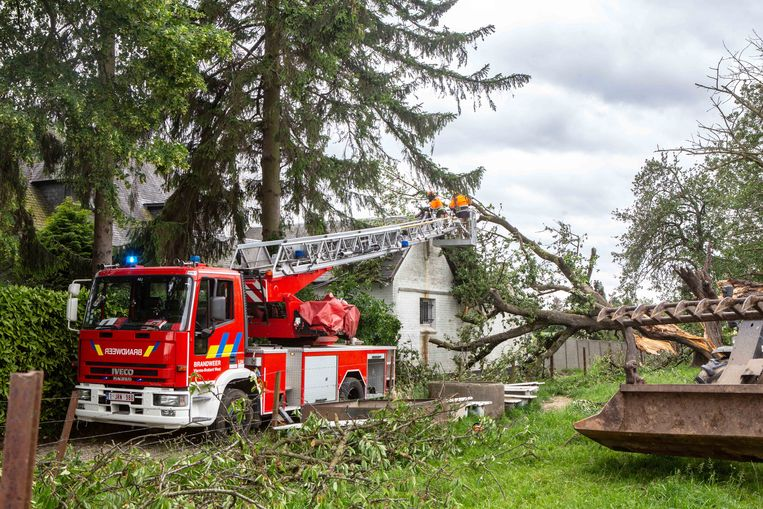Langs de Lotstraat in Sint-Pieters-Leeuw kwam een boom op een woning terecht. De schade bleef gelukkig beperkt, maar de takken sleurden enkele elektriciteitskabels mee waardoor de weg lange tijd versperd bleef.