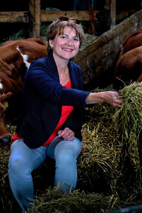 'Onwetende' stedelingen bezoeken boerderij tijdens 'Hopse Waard'