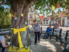 Oudelande heeft een echte paasboom