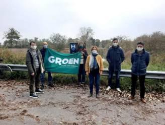 Groen Brugge huldigt het Wilgenbos in als beschermd erfgoed