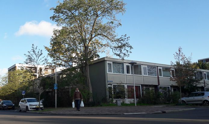 Gemeente Utrecht verkoopt elf woningen aan Bernadottelaan en Monnetlaan in de wijk Kanaleneiland.