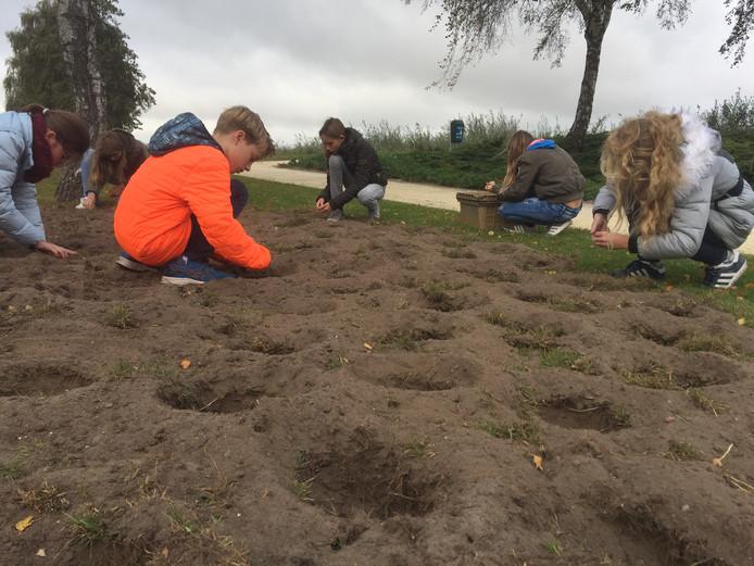 Kinderen van basisschool De Grienden in Lage Zwaluwe planten bloembollen bij het monument van de liniecrossers