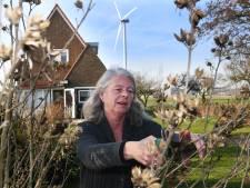 Omwonenden Windpark Houten: 'Eneco heeft met ons geen enkele compassie'