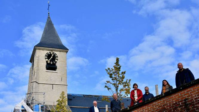 Gouden haan staat weer fier op Sint-Martinuskerk