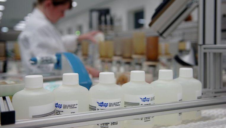 Analisten zijn aan het werk bij het drinkwaterlaboratorium in Leeuwarden. Beeld anp