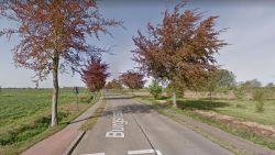 Motorrijder overlijdt nadat hij van weg afraakt en tegen boom belandt