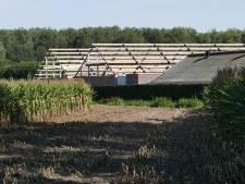 Boxtel gaat akkoord met uitbreiding varkensbedrijf in Liempde