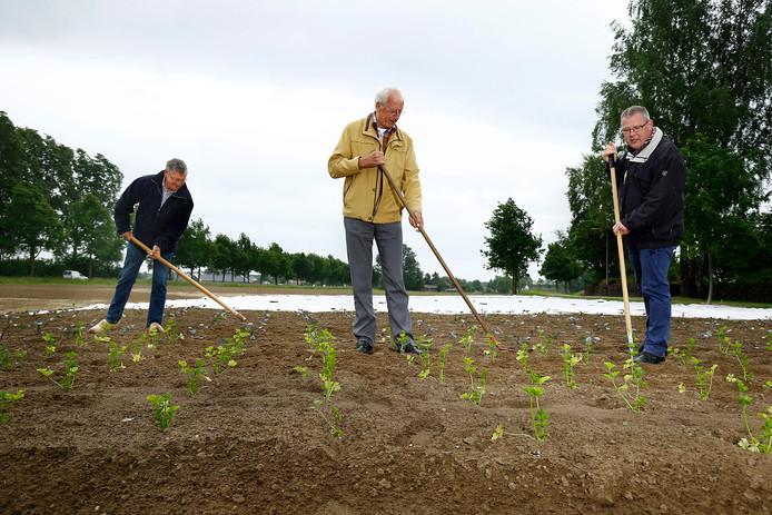 Xaf Hendriksen, Ton Banning en de voorzitter van het Landjuweel 2017 Bas Loeters vanaf links aan het werk.